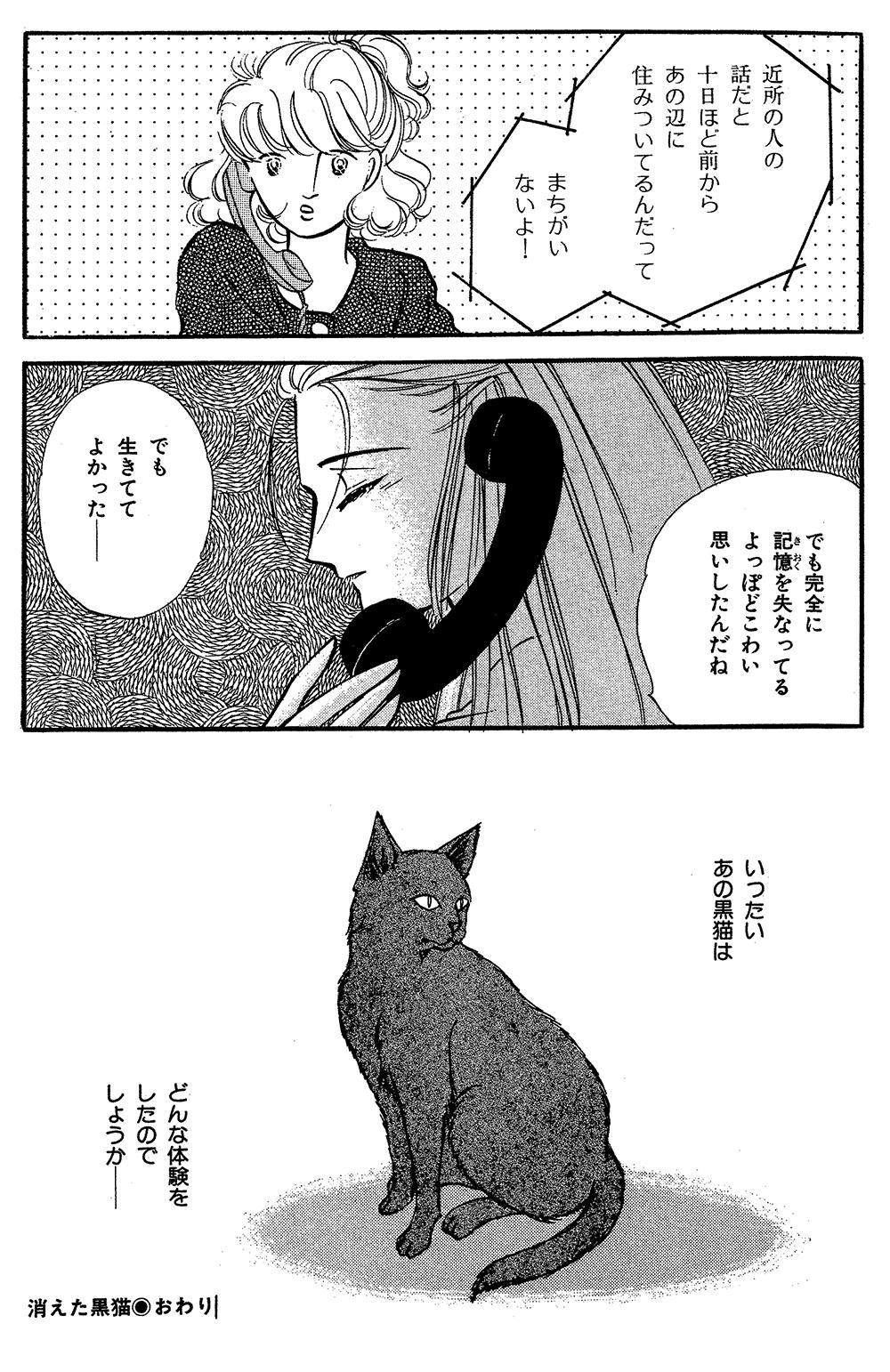 魔百合の恐怖報告  第3話「消えた黒猫」③mayuri09-09.jpg