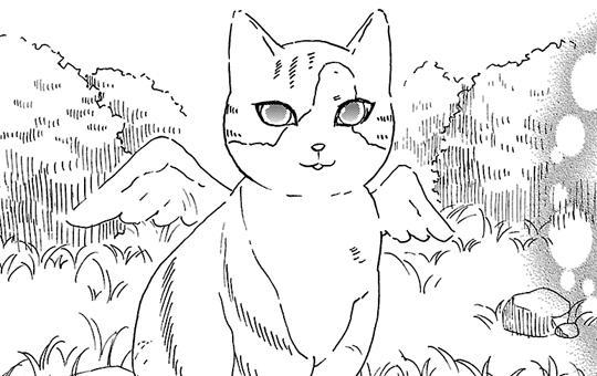 ペットの声が聞こえたら  第6話「キャラとミーコとこむぎのこと」②