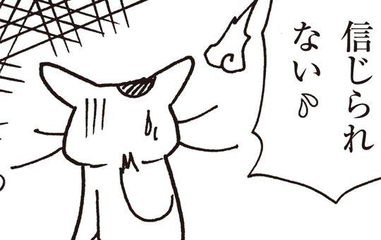 猫で語る怪異 第1話