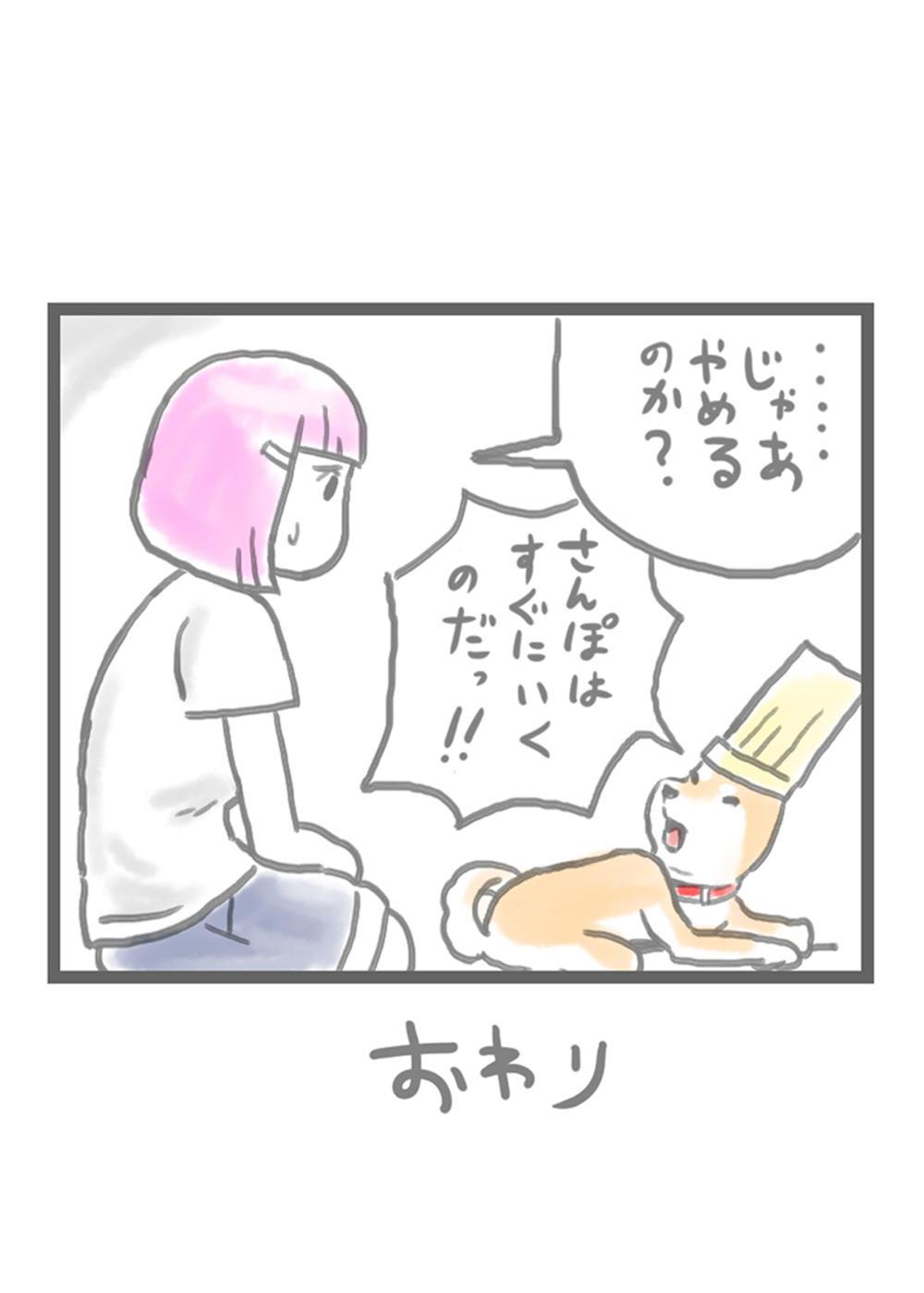sibainu001-5.jpg