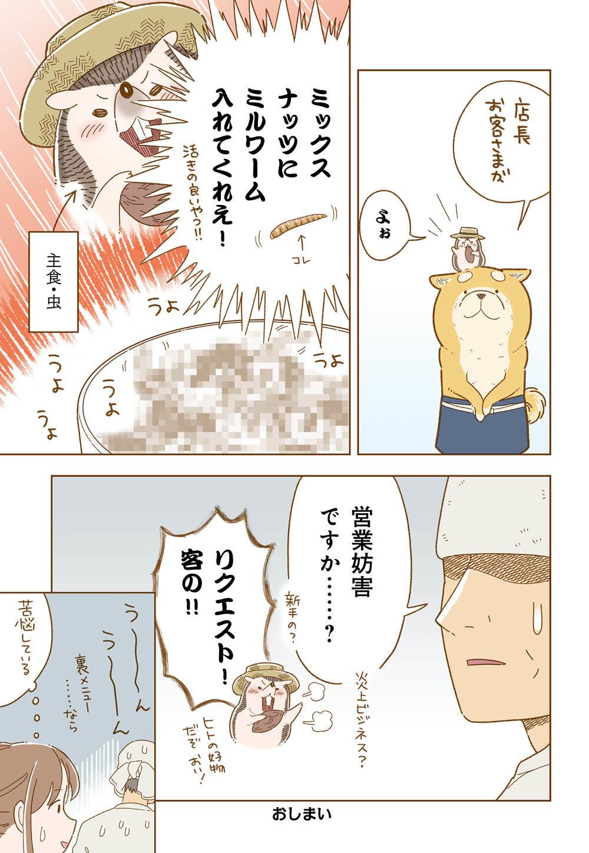 しばさん_13_04.jpg