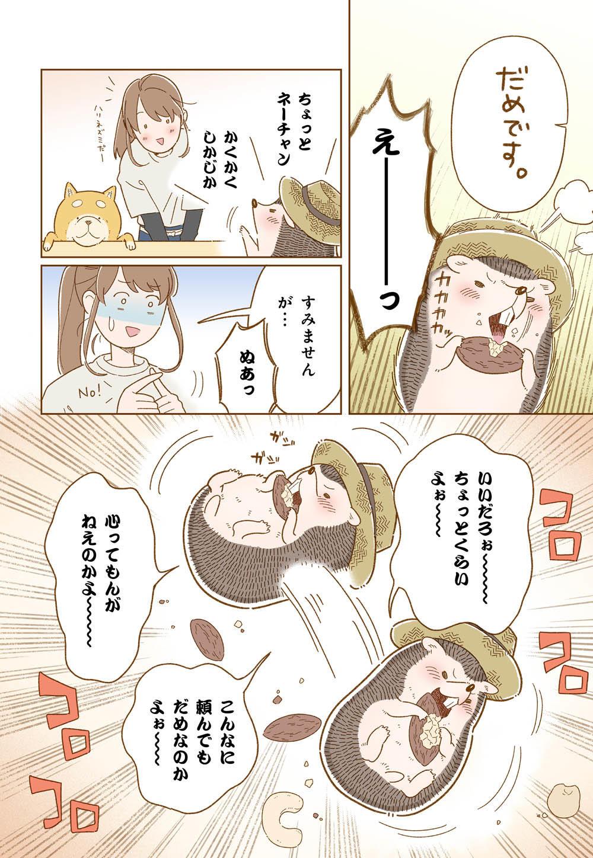 しばさん_13_03.jpg