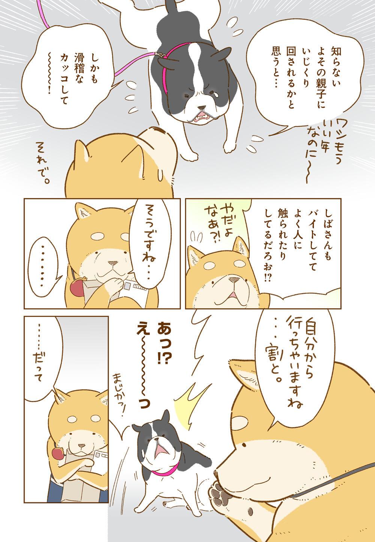 しばさん_17_2.jpg