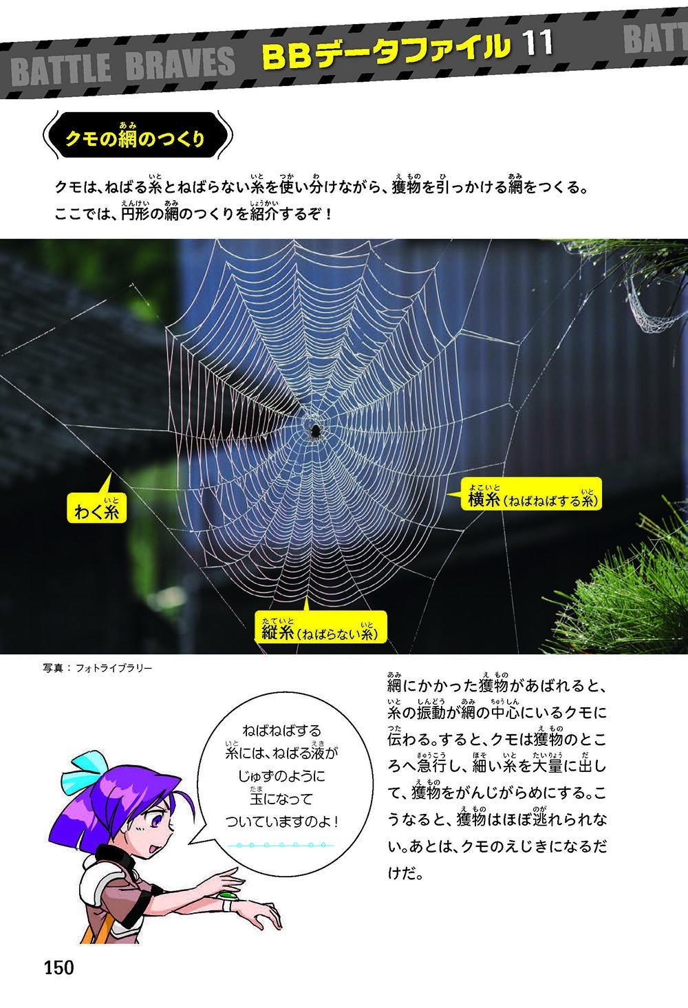 BB_蜊ア髯コ逕溽黄_繝倥z繝シ繧キ繧兩150.jpg