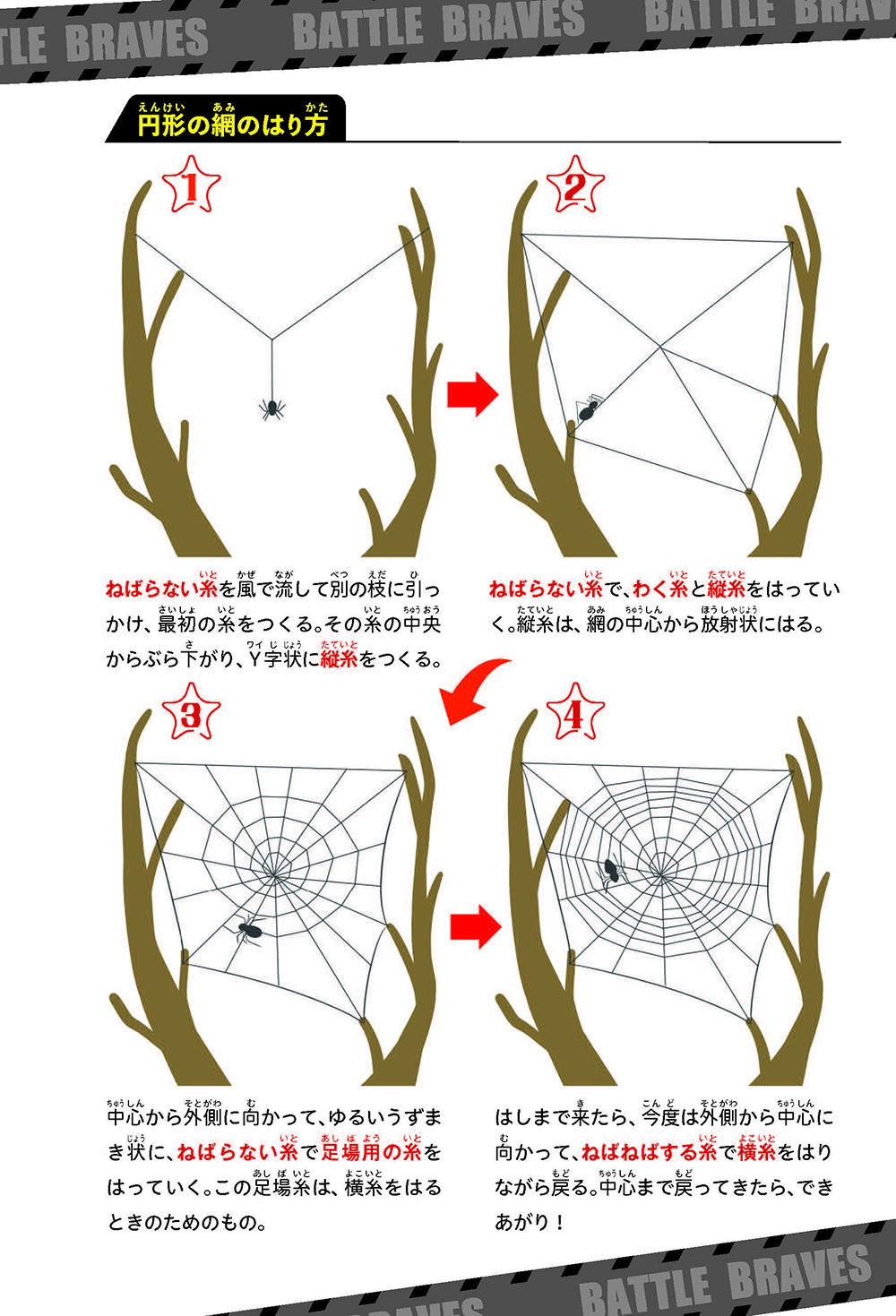 BB_蜊ア髯コ逕溽黄_繝倥z繝シ繧キ繧兩151.jpg