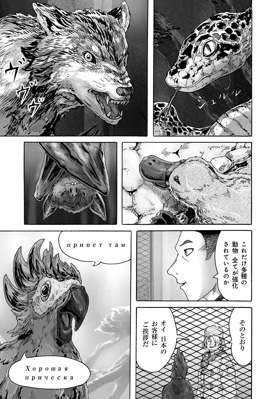 シムグル_00_03.jpg